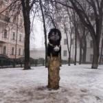 """Памятник """"Ёжику в тумане"""" в Киеве,январь 2009 год."""