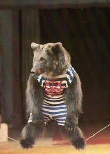 Календарики советский цирк. Медведь на арене