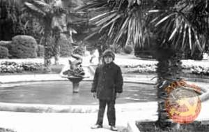 Пальмы, куртки и пальто