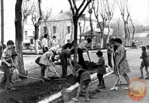 Общественный труд